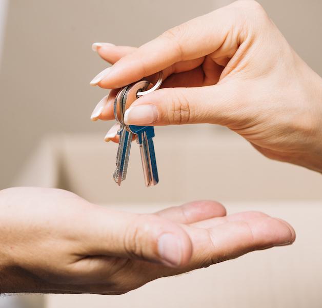 loi-elan-la-loi-qui-va-tout-changer-en-immobilier